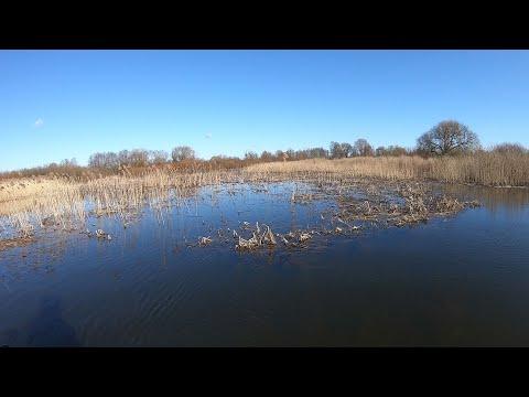 На этом озере МОРЕ ГОЛОДНЫХ щук!!! Ловля щуки 2020. Рыбалка на щуку 2020. Рыбалка на спиннинг 2020.
