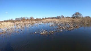 На этом озере МОРЕ ГОЛОДНЫХ щук Ловля щуки 2020 Рыбалка на щуку 2020 Рыбалка на спиннинг 2020