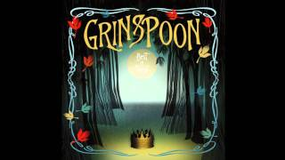 Watch Grinspoon More Than You Are video
