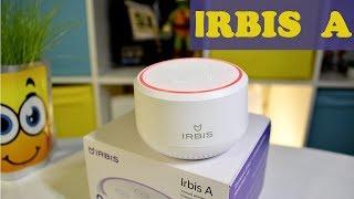 IRBIS A - Умный помощник у вас дома. Алиса внутри.