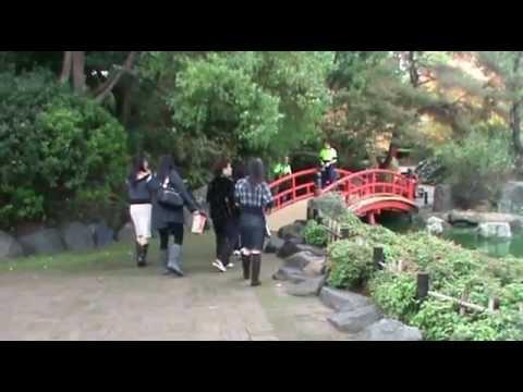 Đi Dạo Vườn Hoa Nhật Bổn, Japanese Garden