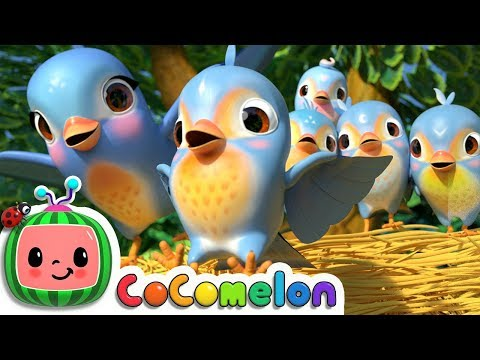 Five Little Birds 3 | CoCoMelon Nursery Rhymes & Kids Songs