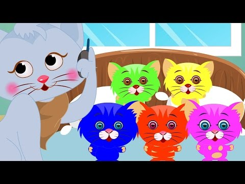 Five Little Kittens | Five Little | Kids Songs With Lyrics For Babies | Nursery Rhymes