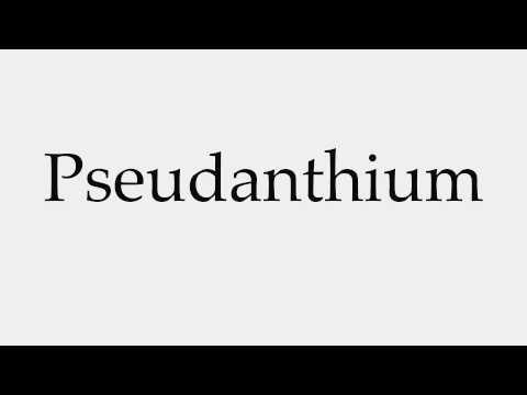 How to Pronounce Pseudanthium