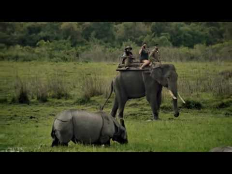 Incredible India Commercial - Gov. India Expose Tour & Travel Information on Website