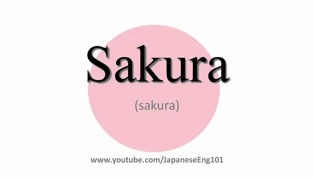 How to Pronounce Sakura