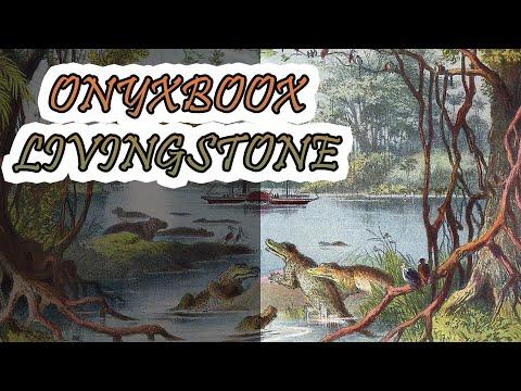 ОБЗОР | Электронная книга ONYX BOOX Livingstone