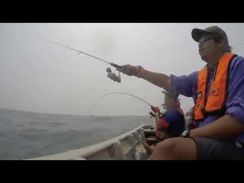 Fish FanaticXs : Jejak Sagai Steroid Port Dickson