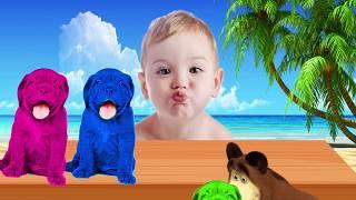 Lernen Farben mit Bunte Hunde Lustige Karikaturen von Tieren für Kinder Kleinkinder | Video für Kinder