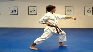 Hướng dẫn tập bài quyền Taikyoku Shodan