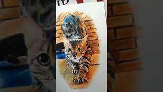 Кот, эскиз для татуировки)