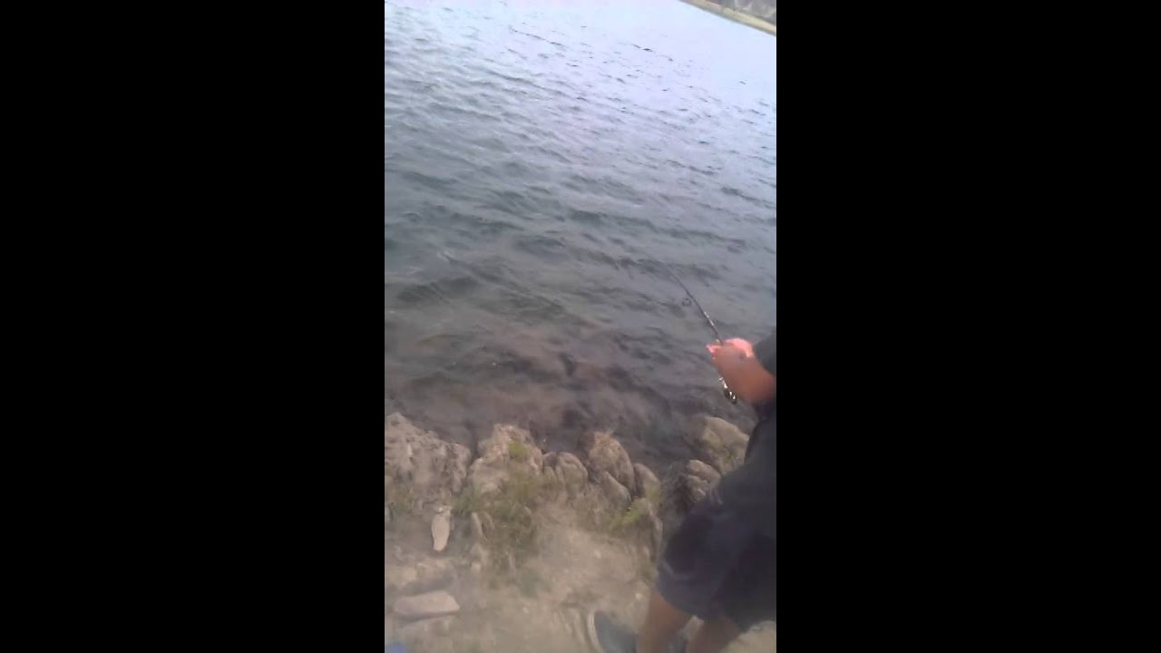 Trout fishing lake mcswain snelling ca youtube for Lake mcclure fishing report