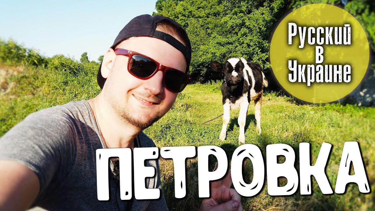 УКРАИНСКОЕ СЕЛО / Петровка / Черниговская область