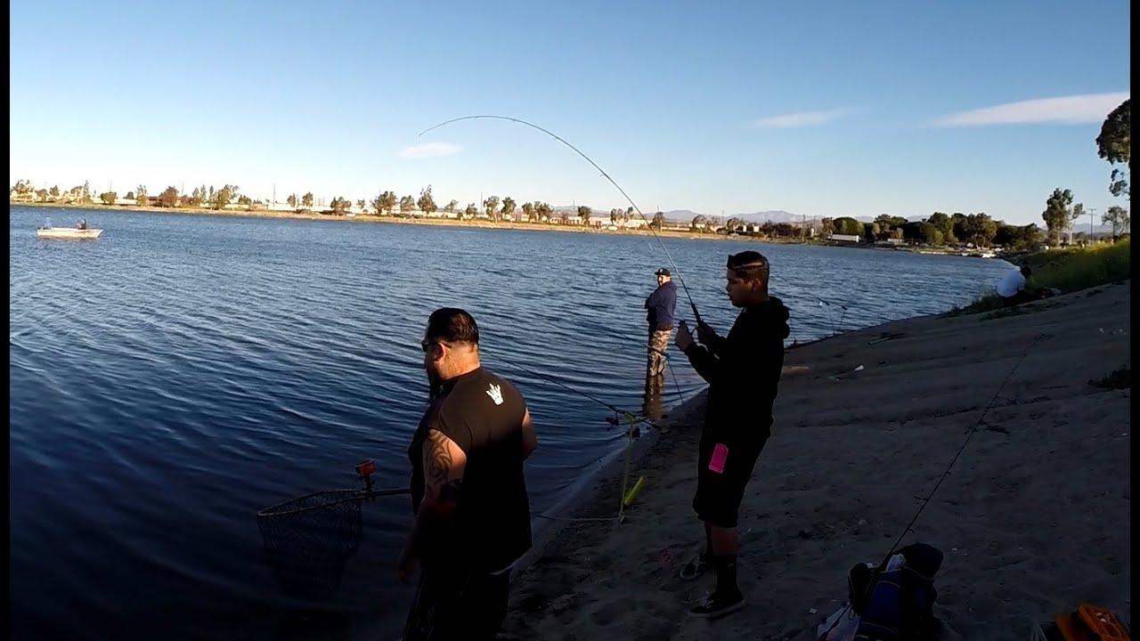 Santa ana river lake trout fishing 3 13 2015 youtube for Santa ana river lakes fishing