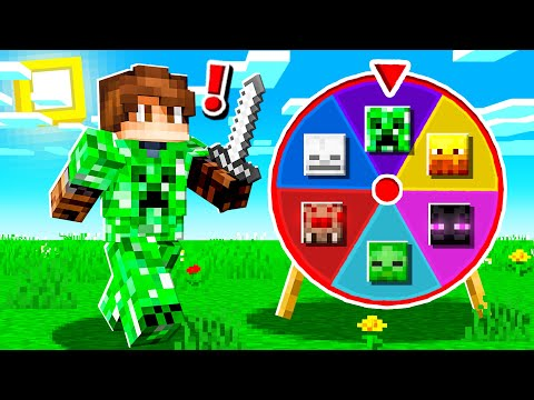 RANDOM SPIN For MOB ARMOR In Minecraft!