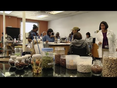 Food Studies at Hostos