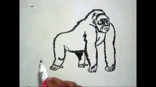 How to Draw A Gorilla (Cara Menggambar Gorila)