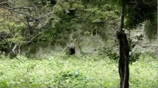 【鎌倉の遺構】東勝寺跡