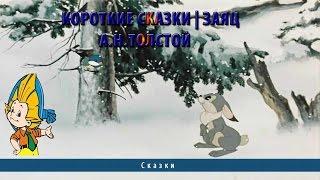 Короткие сказки | Заяц | А.Н.Толстой
