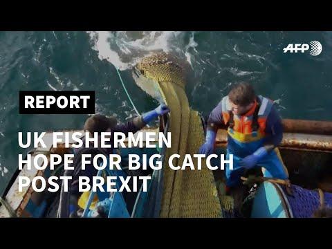 UK Fishermen Angling For Big Catch Post Brexit | AFP