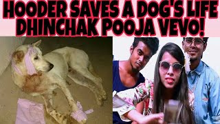 YOUR GUY HOODER SAVED A DOG'S LIFE! | DHINCHAK POOJA NEW VEVO CHANNEL |