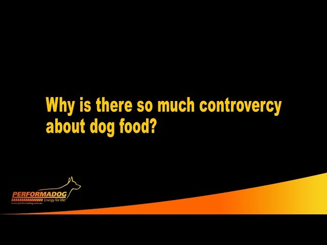 Why is there so much controvercy about dog and cat food?