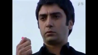 brown polat alamder