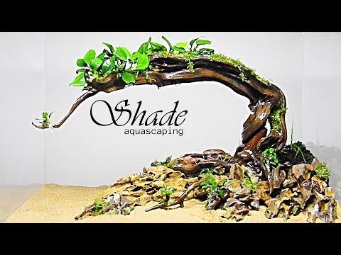 aquascaping-shade