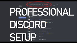 How to set up your Discord Server Profesionally in 2018!
