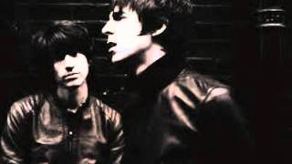 My little red book - The last shadow puppets