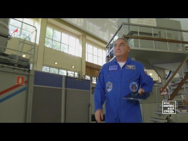Космическая среда № 235 от 22 мая 2019 года