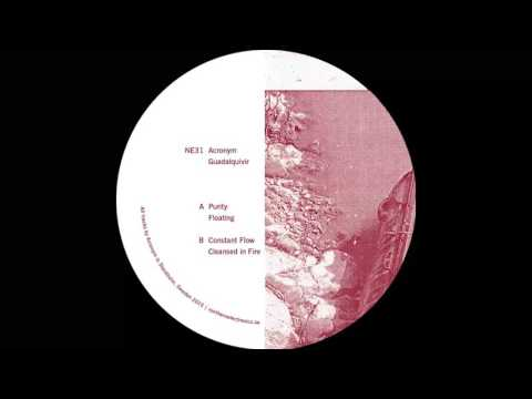 Acronym - Cleansed in Fire [NE31]