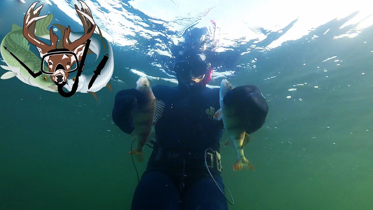 Подводная охота #19 пробуем костюм ELIOS