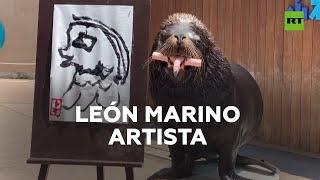 Este león marino pinta retratos I RT Play