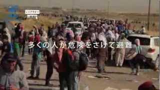 シリア難民200万人を越える。 シリア緊急支援にご協力を - 国連UNHCR協会 thumbnail