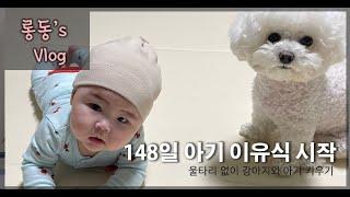 [롱동's Vlog] 148일아기 이유식시작/울…