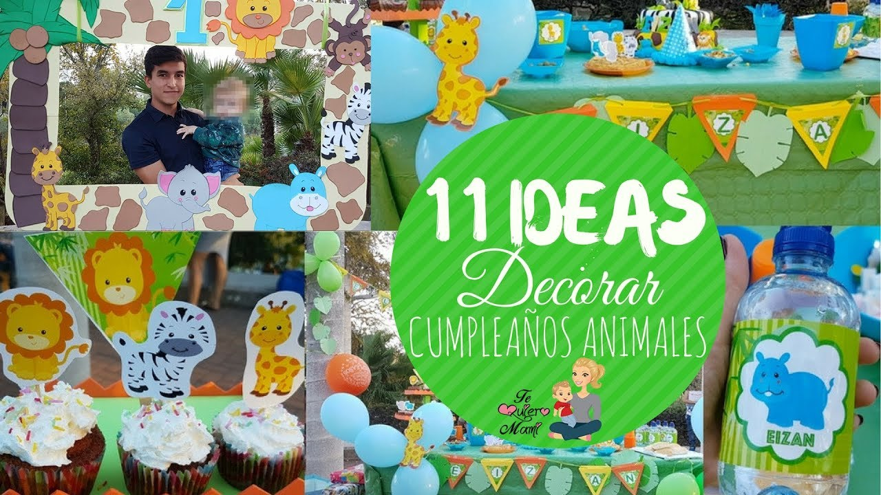 11 ideas para decorar cumplea os de animales animals birthday party ideas youtube - Ideas cumpleanos infantiles ...