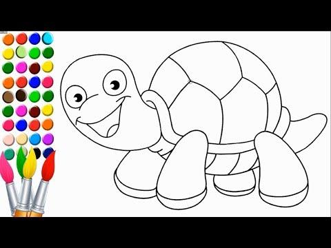 Kaplumbağa çizimi Ve Boyama