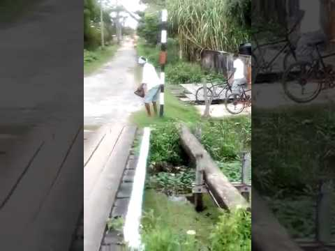 Man dances on a pole in guyana for some food