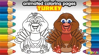 Draw Turkey (bird) for Kids. Animation for Kids. Colouring Pages for Kids. Drawing Farm Bird Turkey