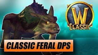 Classic WoW Feral Druid DPS