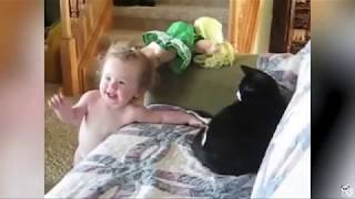 Try not to laugh funny animal vine edition