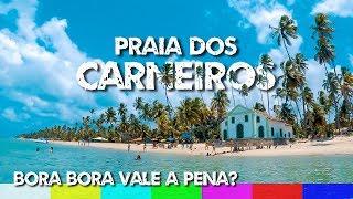 Praia dos Carneiros: Bora Bora Vale a Pena? - Pernambuco