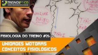 Conceitos fisiológicos das Unidades Motoras - Fisiologia do Treino #26