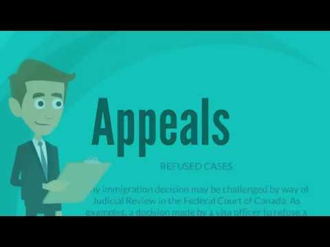 Immigration Appeals - Matthew Jeffery, Toronto Immigration Lawyer