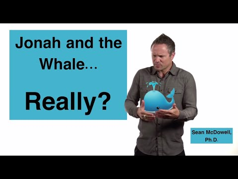 Was Jonah Really Swallowed By A Big Fish?