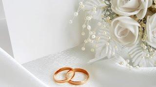 Свадьба Сергея и Юли