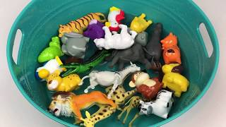 Learning Colors with Zoo Animals in a Fun Pool Party