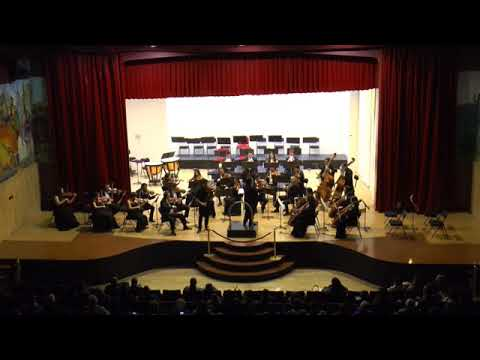 "Mozart violin concerto no. 5 ""Turkish"" - Alejandro Castillo"