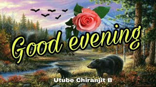 good night wishes video for whatsapp